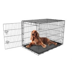 Carlson Pet Products Secure and Foldable Single Door